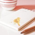 Red Letter Studio